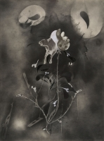 http://nilskarsten.de/files/gimgs/th-32_5_5_black-flower-5.jpg